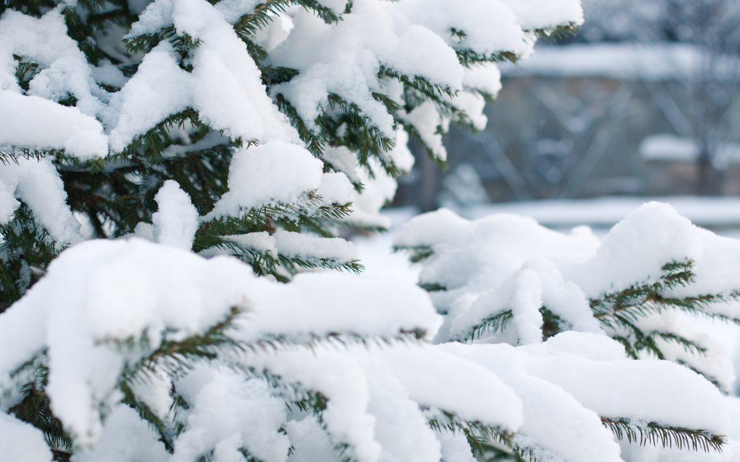 Winter Events in North Wales, near Holiday Park Llandudno